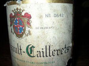 Meursault-1er-caillerets-1999-JFCD--4---500-.jpg