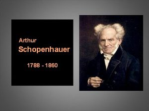 schopenhauer é