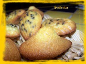 madeleines aux pepites de choclat 4