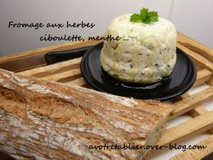 fromage-maison.JPG