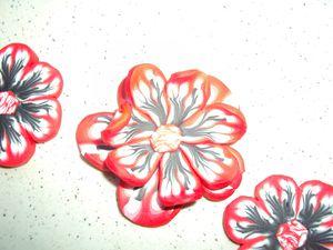 Fleurs rouge noire (3)