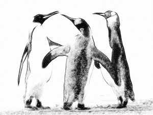 FotoSketcher---Penguins.jpg