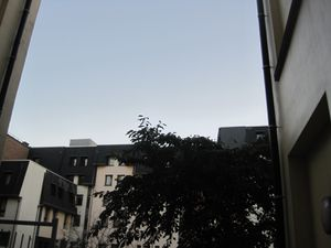 bidou-en-octobre-2010-3829.JPG