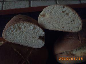 pains vieinnois au levain kayser 7