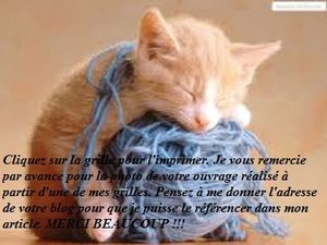 fond chat tricot