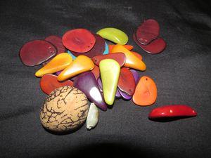 Ivoire-vegetal.JPG