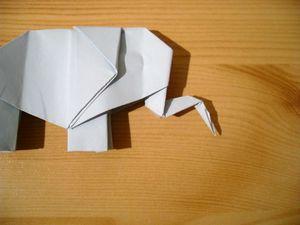 éléphant 47