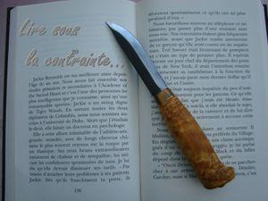 Lire sous la contrainte - Phildes