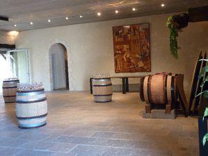 27 Côtes de Beaune, vue du hall du château de Chassagne-M