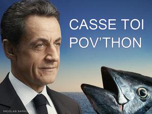 Le CV de Sarkozy, inattendu candidat à la présidentielle - Page 5 Sarkozy-casse-toi-pauvre-thon