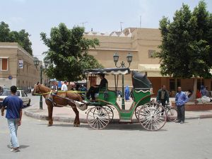 TAROUDANT_el-koutchi-la-caléche-de-taroudant-maroc