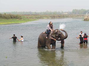 NEPAL 5016