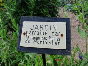 JARDIN BOTANIQUE ST XIST (4)