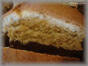 cake marbré chocolat pistache vanille6