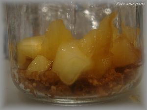 yaourts speculoos pommes caramel4