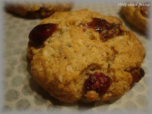 cookies avoine cranberries4