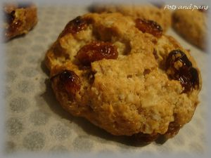 cookies avoine cranberries7