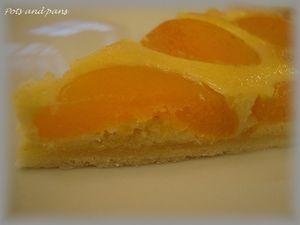 tarte abricots7