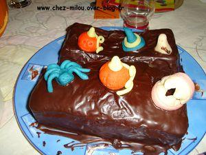 gâteau de Victoria 07