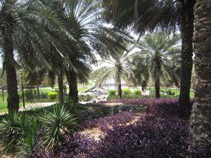 Dubai 0035