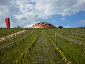www-woodstoneglass-com carapace winery by arnaldo -copie-1