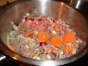 recette 2011 bolognaise soupe 3 légumes 006