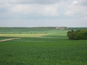 domaine de la grange en Haye
