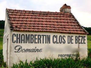 Clos-de-Beze-maison---copie.JPG