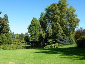 Arboretum Châtenay Malabry 008