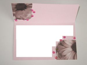 Cartes en Scrap 2 5064spray