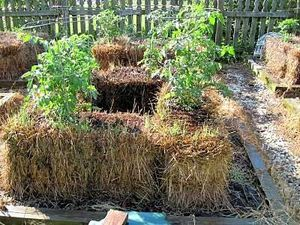 NATURES - Culture sur paille StrawBaleGarden (1.1)