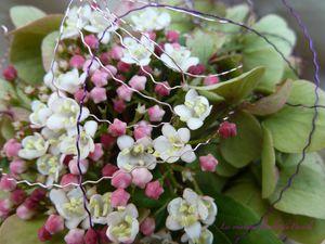 Pique fleurs ANJA