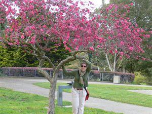 SF Botanic Garden - 20