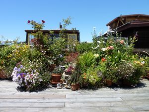 Sausalito houseboat Community - 17