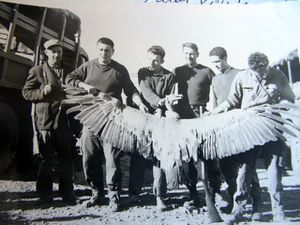 papa-chasse-en-algerie-1961-002.jpg