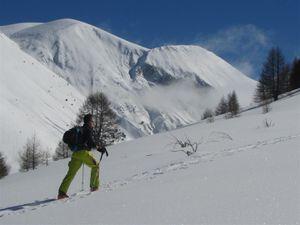 Ski-de-rando-2015-1 6499 (Large)