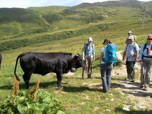 2012-07-07 Chamonix Zermatt 20