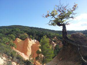 2012-10-25 Provence 05