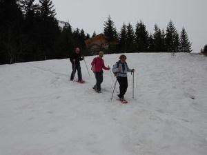2011-03-31 Alpage des Têtes 07