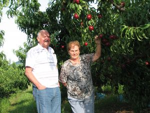 2011.07.14-Cueillette-de-fruits1.jpg