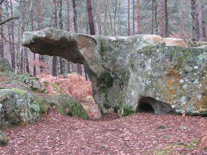 2011.01.01 Forêt de Fontainebleau2