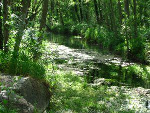 2010.06.10 Sentier le long de la Drôme2
