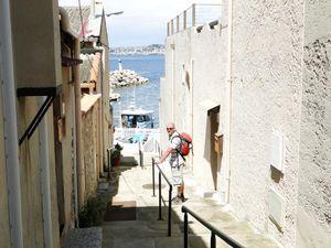 14 Madrague port
