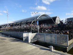 Amsterdam Vélo 02