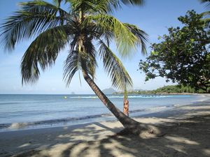 2011_09_01_martinique_sud_caraibe