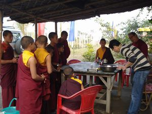 Dentiste and group of lama (2)