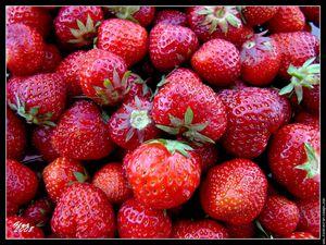 fond-d-ecran-fraises.jpg