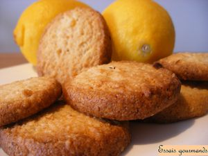 sables-citron.JPG