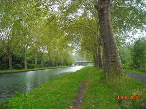 DSCN9596-copie-1.JPG