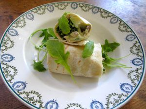wrap-avocat-chevrer.jpg